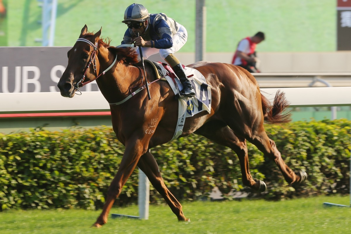 Aethero storms to victory at Sha Tin. Photos: Kenneth Chan