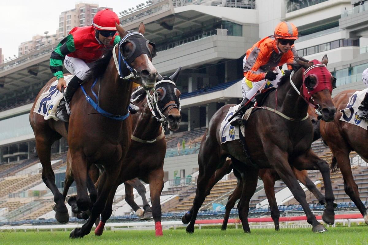 Horses thunder down the Sha Tin straight on Sunday. Photo: Kenneth Chan