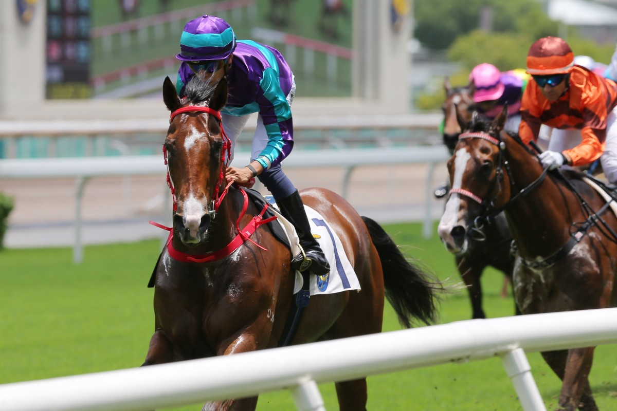 Winning Dreamer surges to victory at Sha Tin in May. Photos: Kenneth Chan