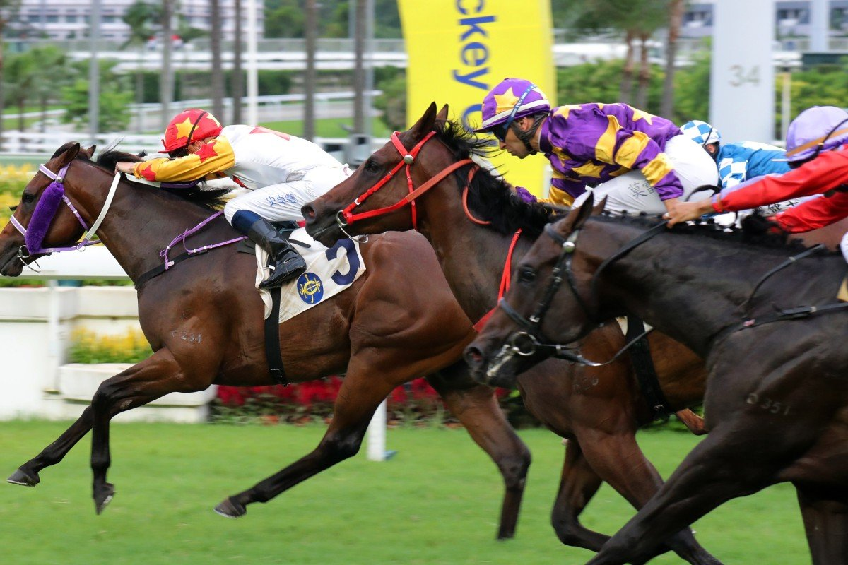 Lucky Express (middle) and Armando (right) finish behind Mr Croissant on debut. Photos: Kenneth Chan
