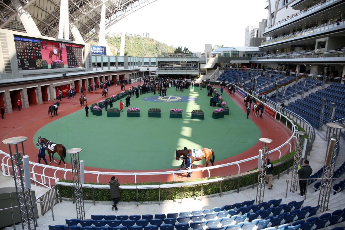 Horses parade at Sha Tin in the Covid-19 world without fans. Photo: Kenneth Chan