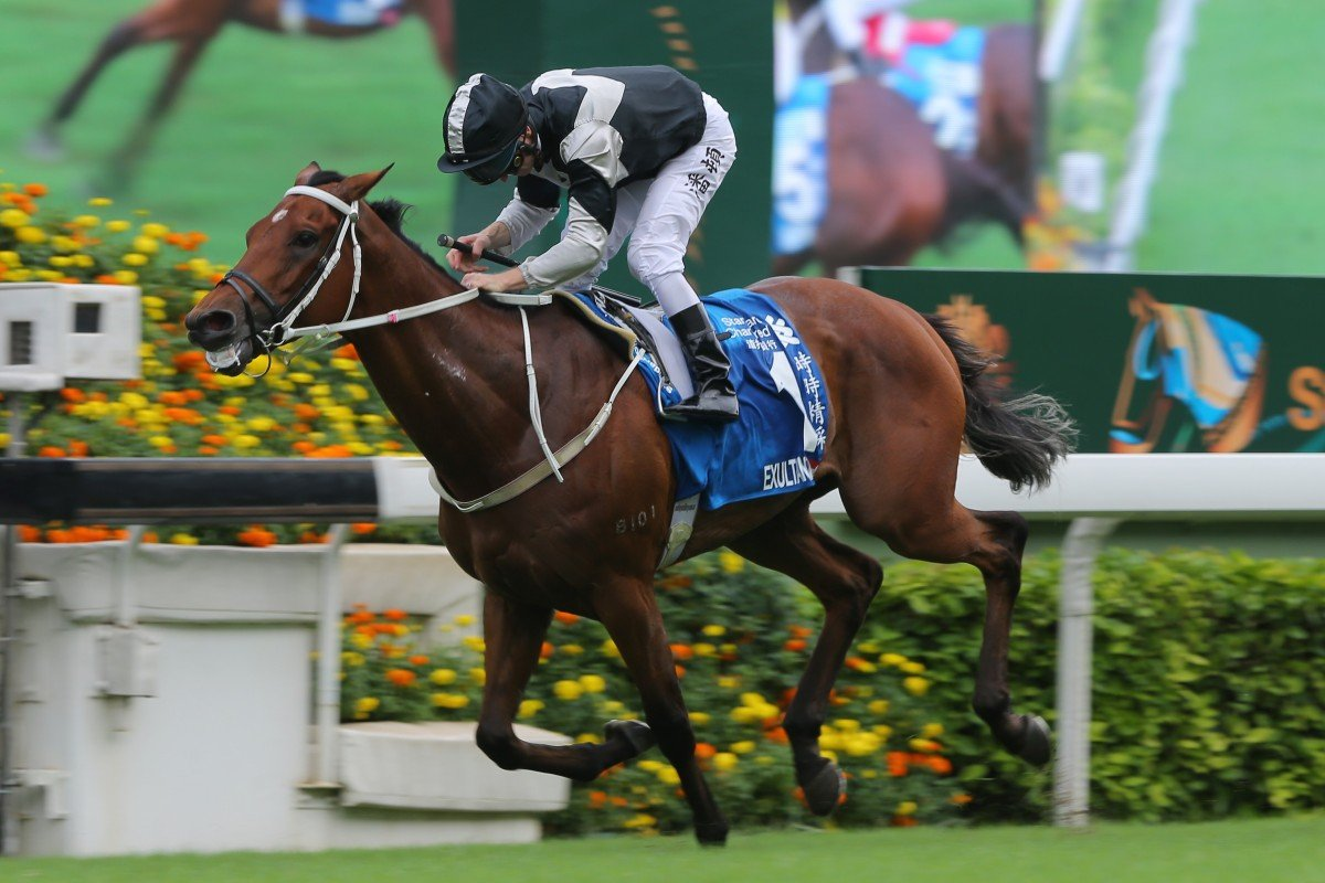 Exultant salutes at Group One level last season. Photos: Kenneth Chan