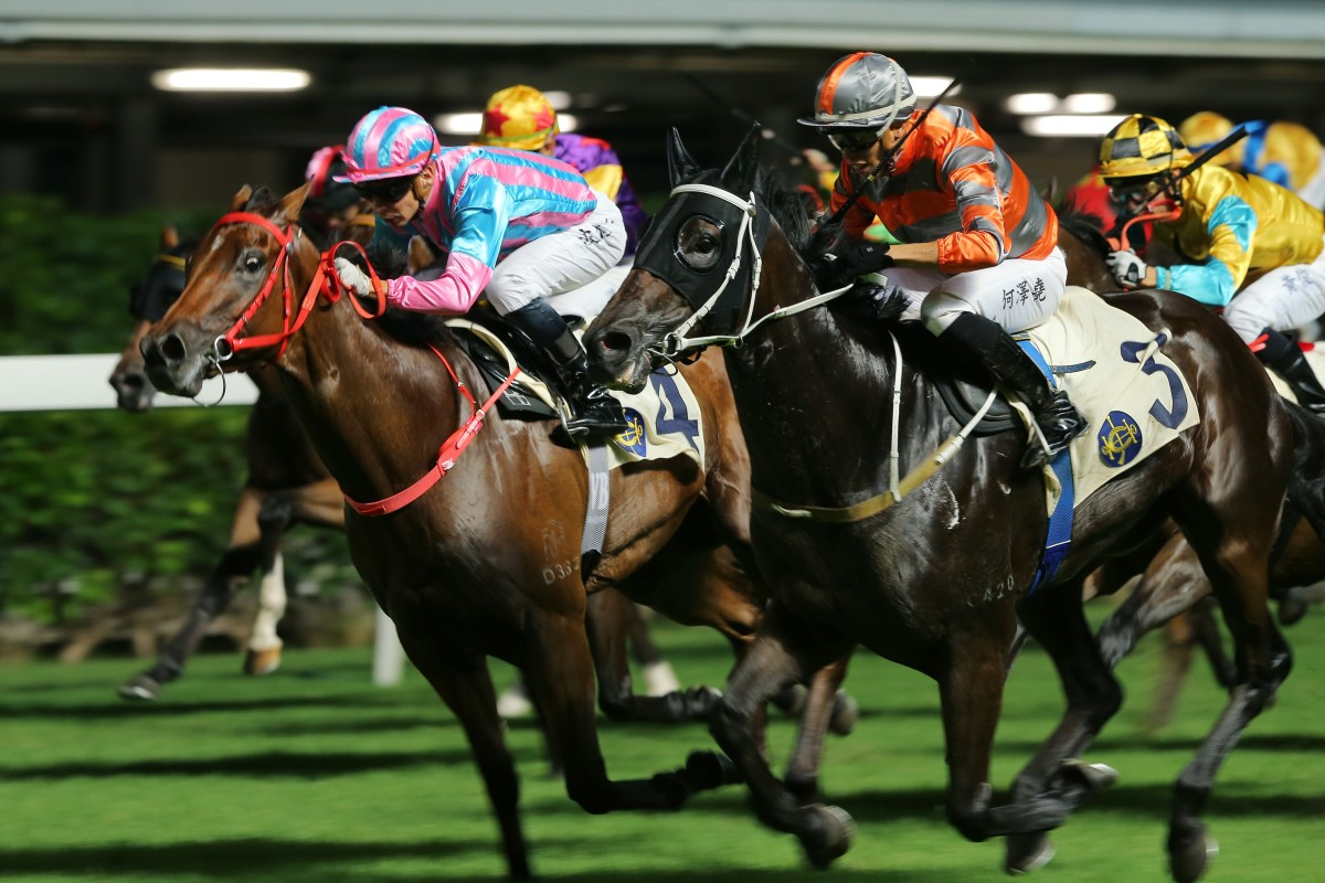 Sell My Sole (left) finishes second to Power King at Happy Valley last season. Photos: Kenneth Chan