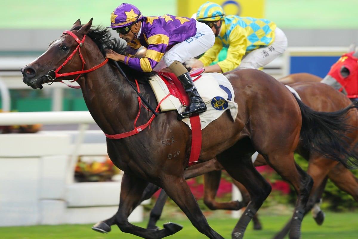 Lucky Express wins at Sha Tin earlier this season. Photos: Kenneth Chan