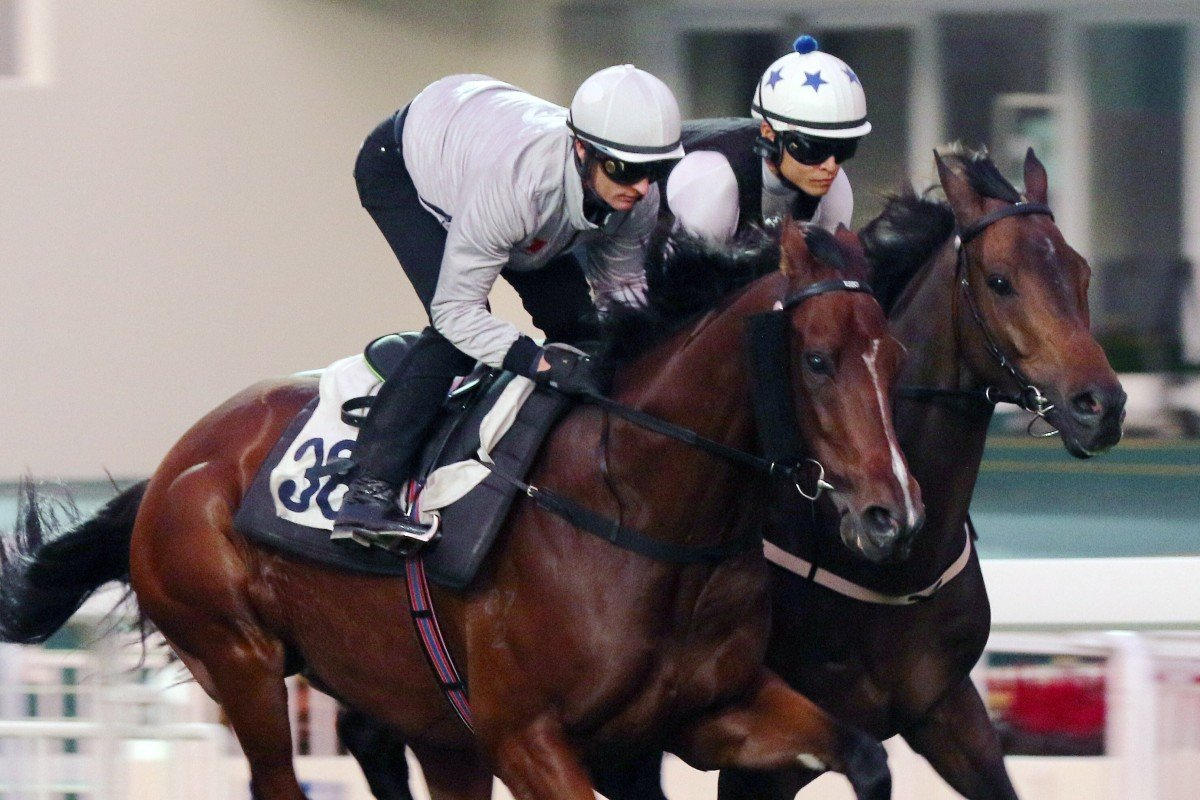 Beauty Generation (left) works with Shadow Hero (right) at Sha Tin. Photos: Kenneth Chan