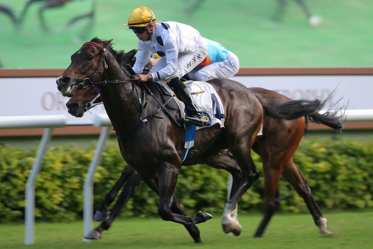 Golden Sixty salutes under Vincent Ho at Sha Tin on Sunday. Photos: Kenneth Chan