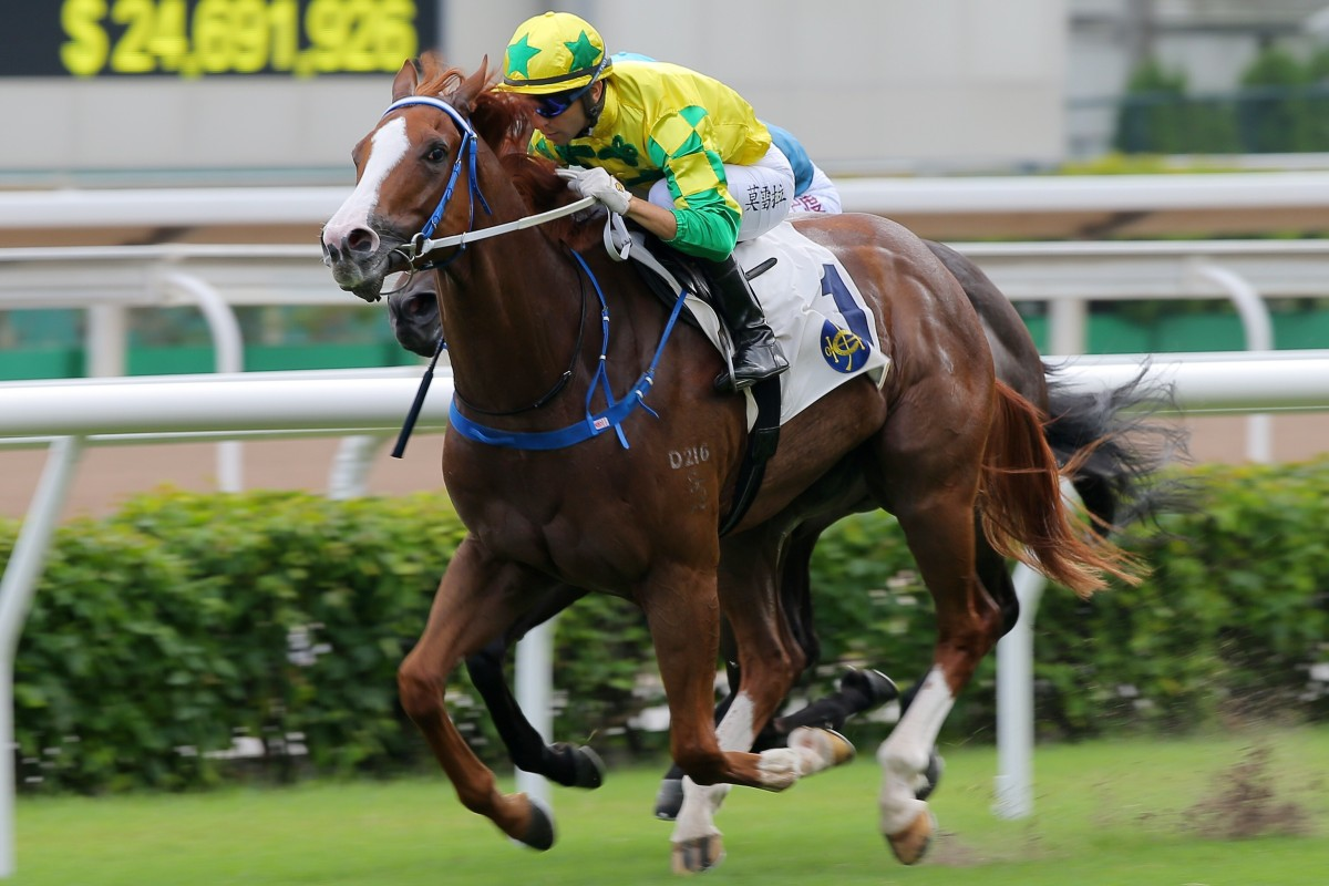 Sky Field salutes at Sha Tin earlier this month. Photos: Kenneth Chan