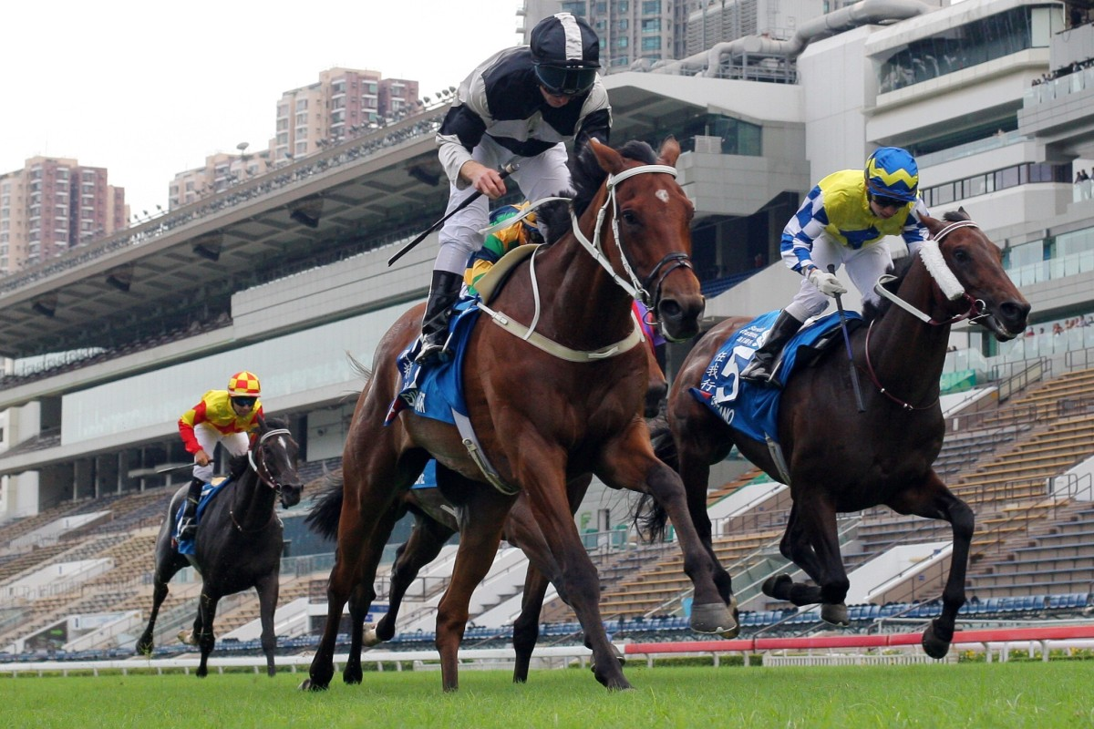 Exultant holds off Chefano to win the Group One Champions & Chater Cup last season. Photos: Kenneth Chan