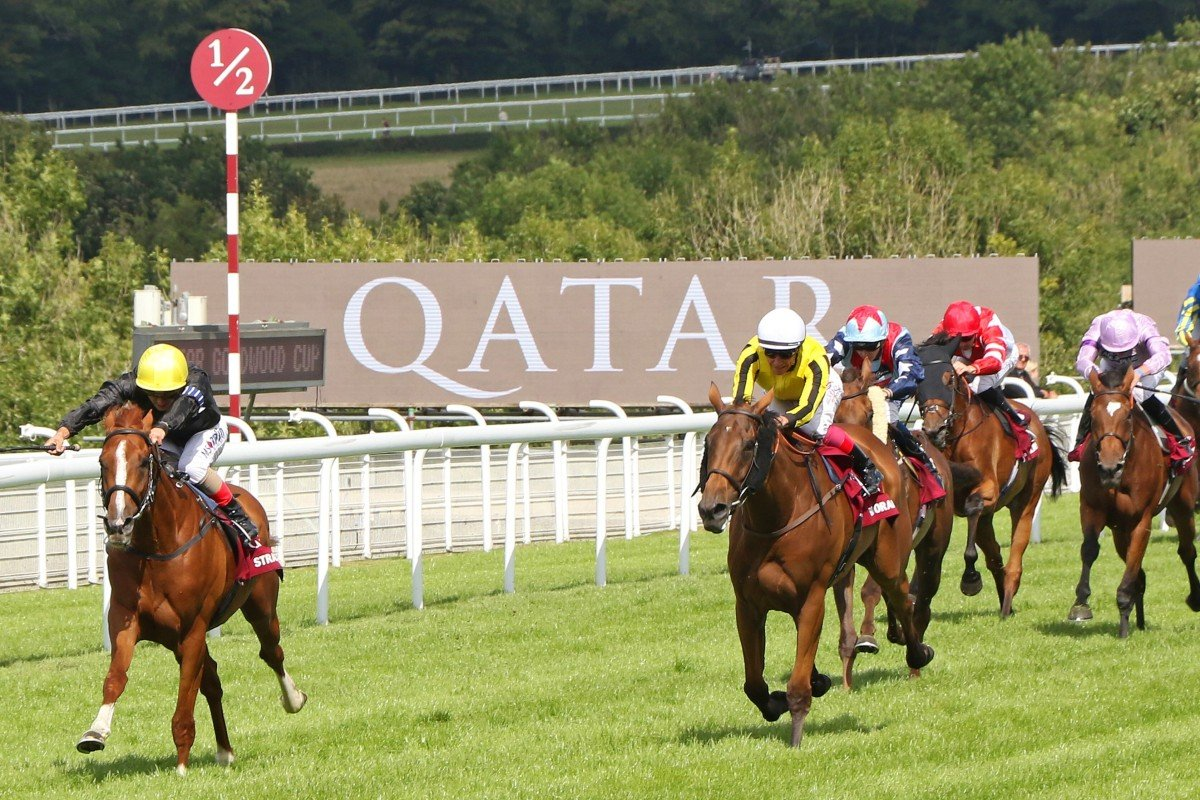 Stradivarius wins the 2017 Group One Goodwood Cup at Glorious Goodwood. Betting on the five-day festival could be in place by 2021. Photo: RACINGFOTOS.COM