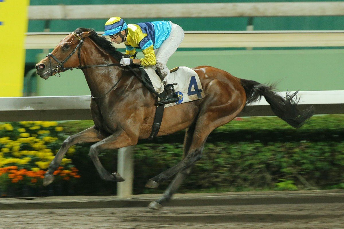Righteous Doctrine makes it two on the trot at Sha Tin in April. Photos: Kenneth Chan