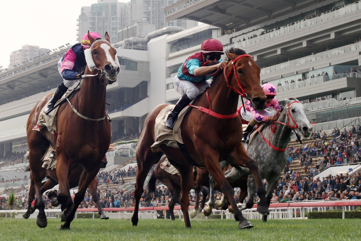 Beat The Clock (centre) goes out as a four-time Group One winner. Photos: Kenneth Chan