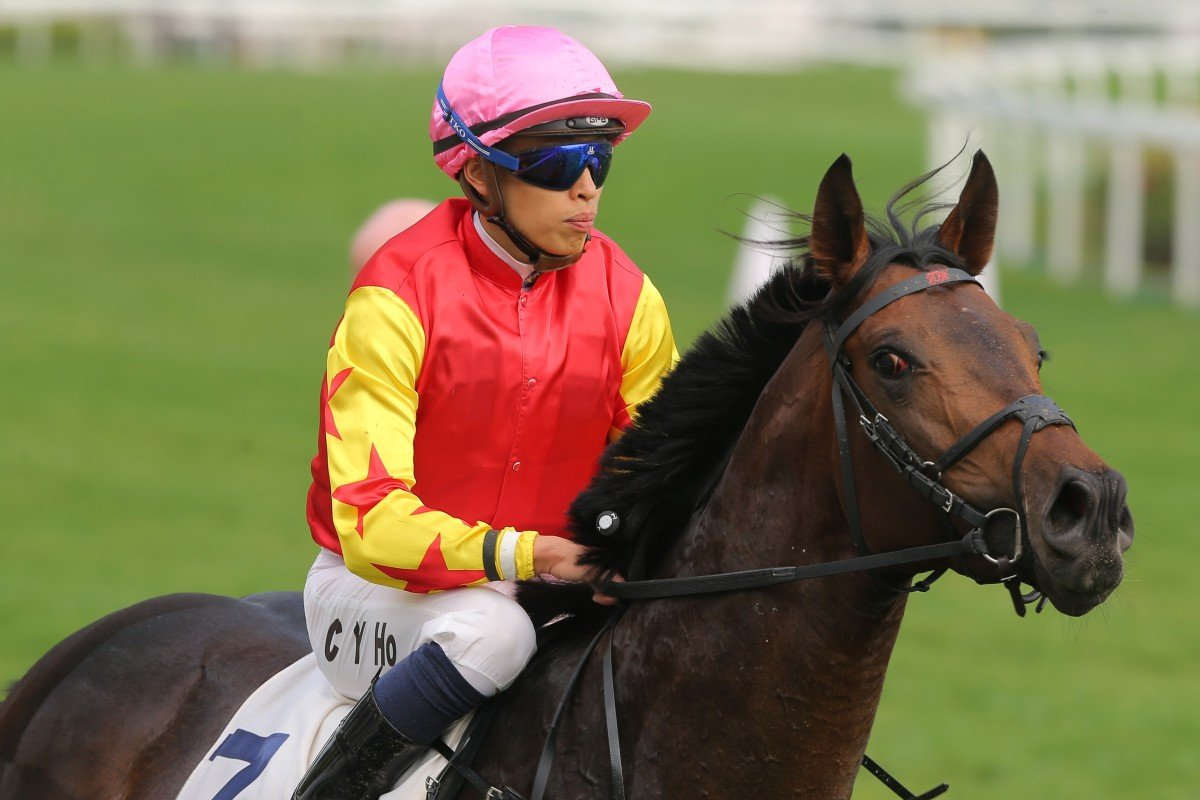 Farhh Above returns under Vincent Ho after winning his first start for Douglas Whyte last season. Photos: Kenneth Chan