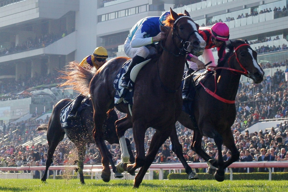 Admire Mars wins the 2019 Hong Kong Mile. Photos: Kenneth Chan