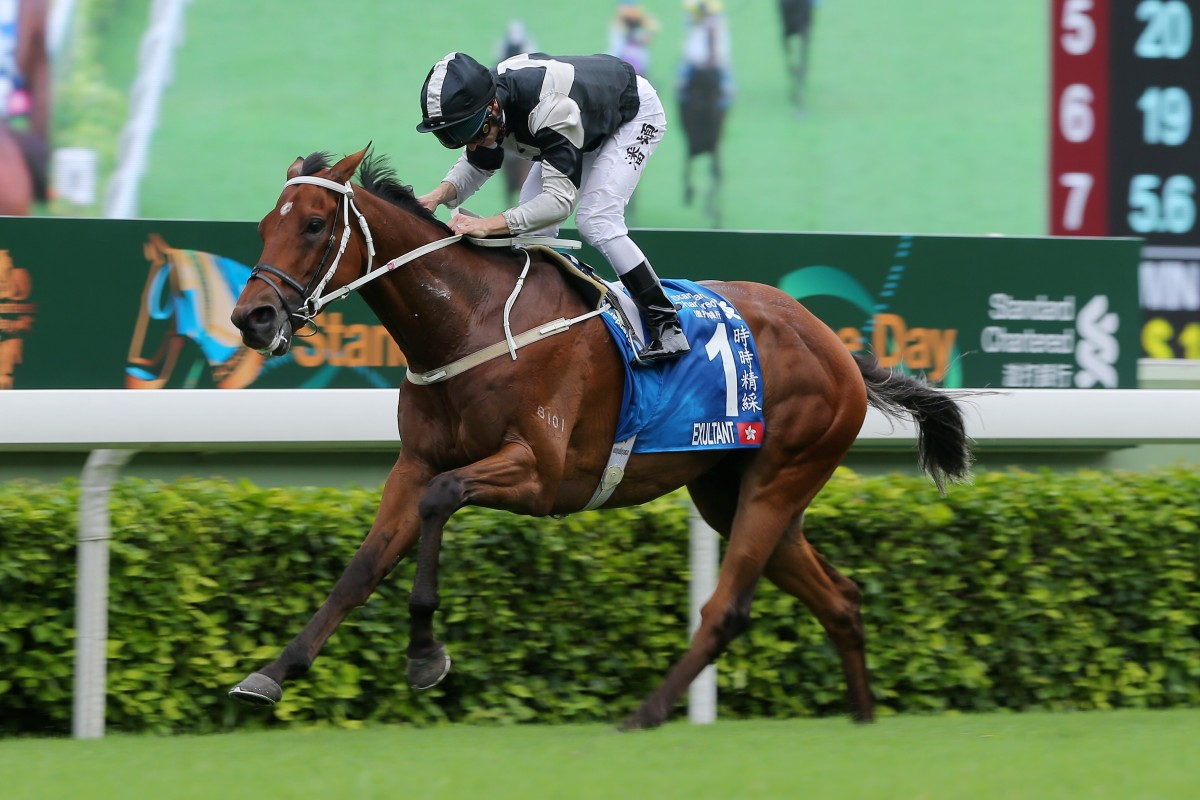 Exultant cruises to victory in the Group One Champions & Chater Cup (2,400m) at Sha Tin last season. Photos: Kenneth Chan