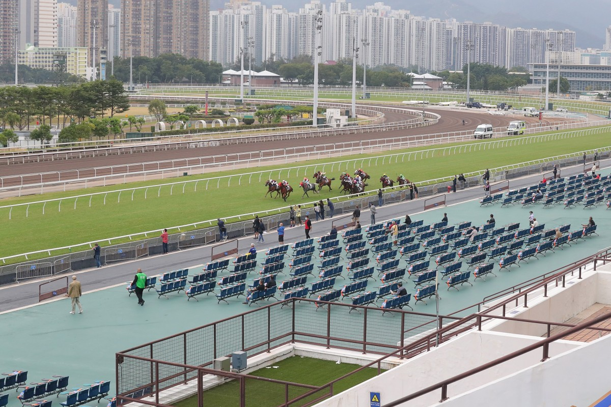 Horses race in front of largely empty stands at Sha Tin this season. Photos: Kenneth Chan