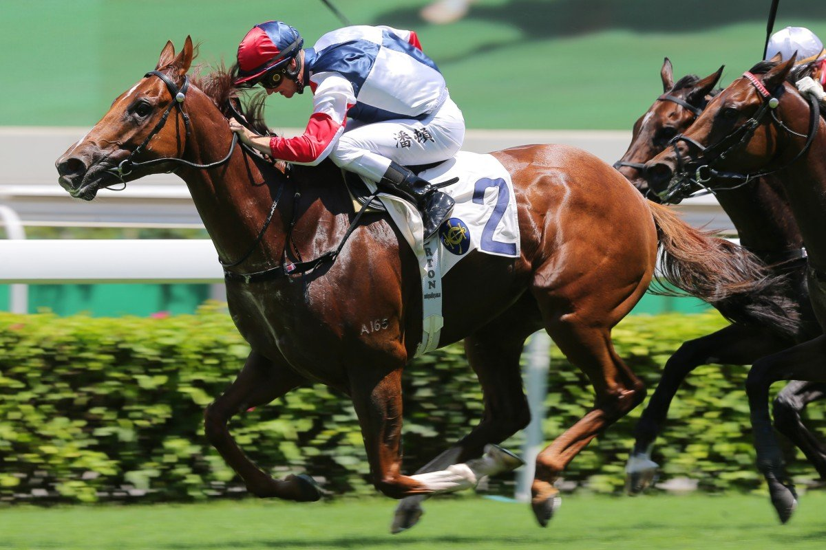 Fast Most Furious salutes at Sha Tin in July. Photos: Kenneth Chan