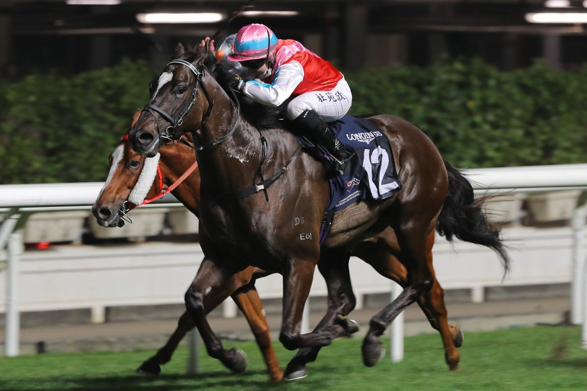 Harmony N Blessed, ridden by Hollie Doyle, wins at Happy Valley on Wednesday night. Photos: Kenneth Chan
