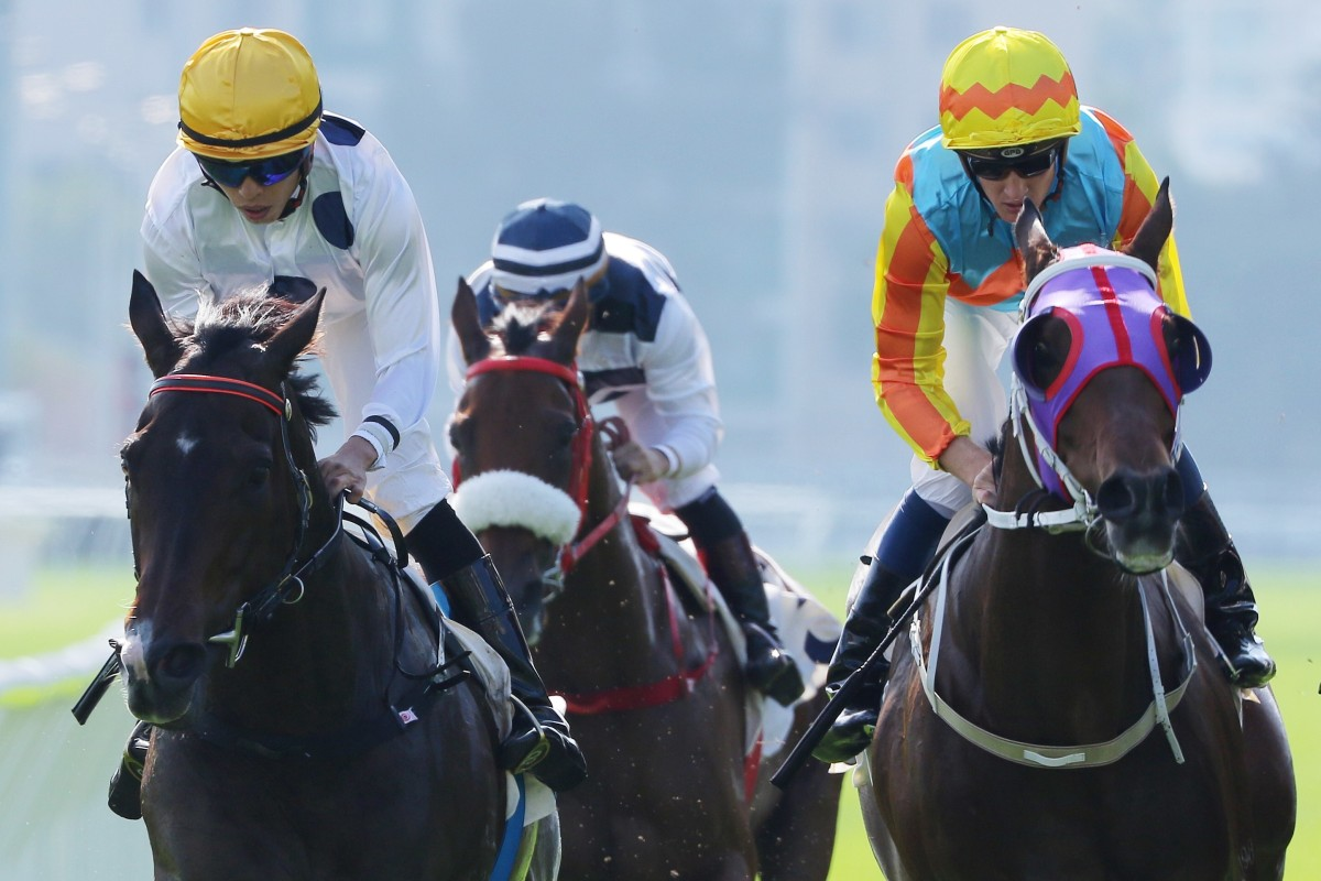 Golden Sixty wins the Group Two Jockey Club Mile at Sha Tin. Photos: Kenneth Chan