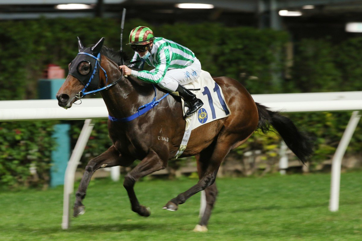 Jockey Zac Purton guides Noble Birth to victory at Happy Valley on Wednesday night. Photos: Kenneth Chan