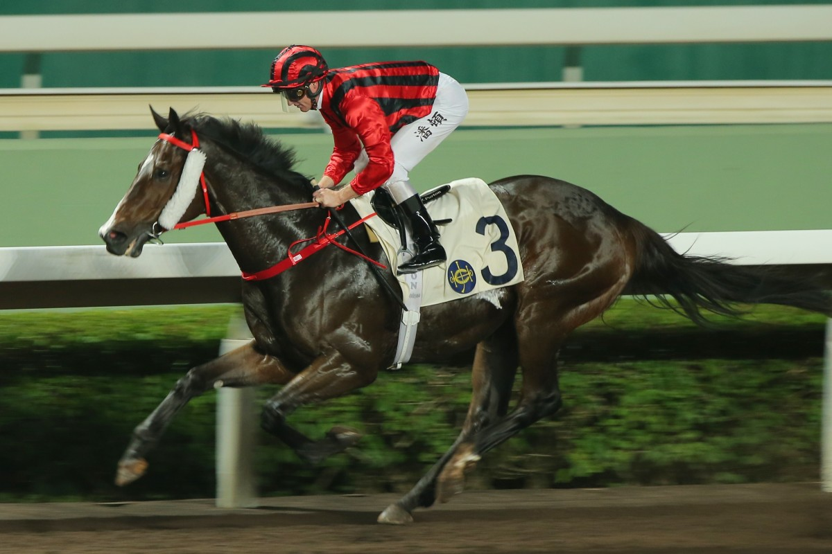 Kings Shield wins easily on the Sha Tin all-weather surface earlier in the season. Photos: Kenneth Chan
