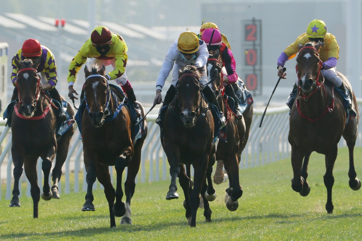 Golden Sixty (yellow cap and white silks) edges out Southern Legend (yellow and maroon silks) to take out the Group One Stewards' Cup at Sha Tin on Sunday. Photos: Kenneth Chan