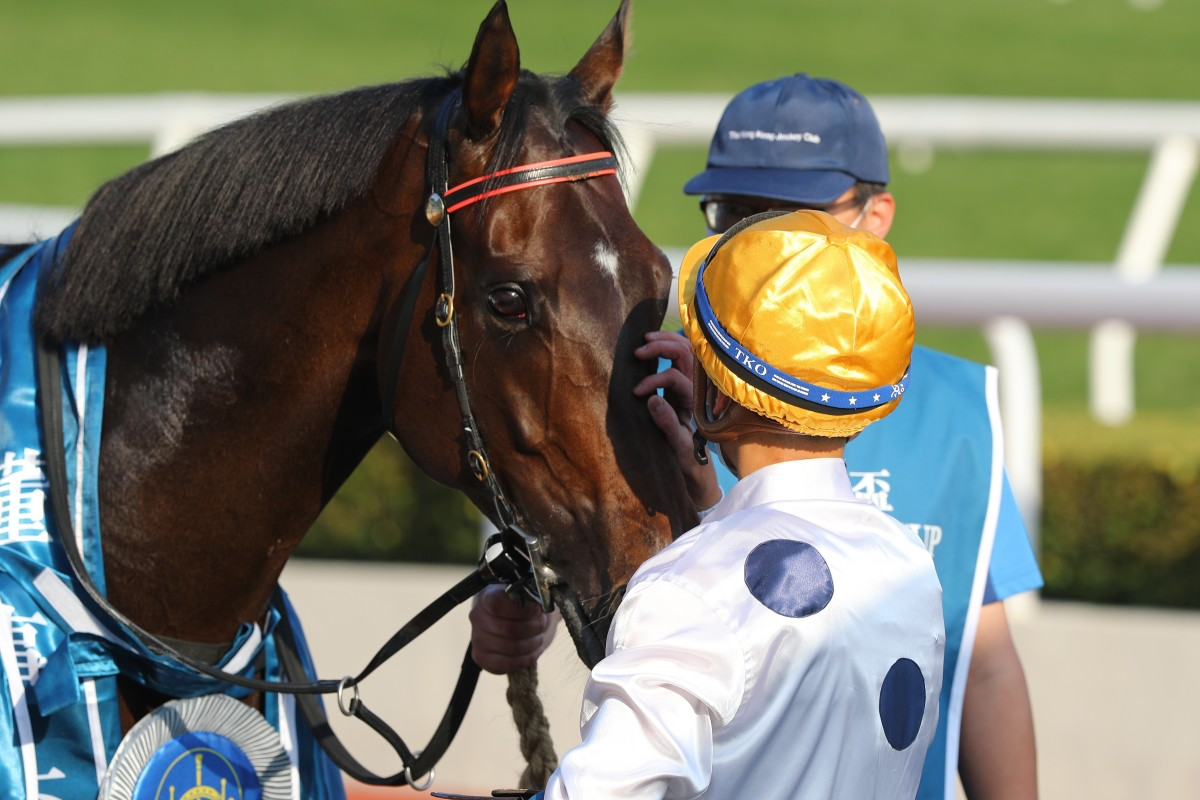 Vincent Ho gives Golden Sixty a pat after winning the Group One Stewards' Cup. Photos: Kenneth Chan