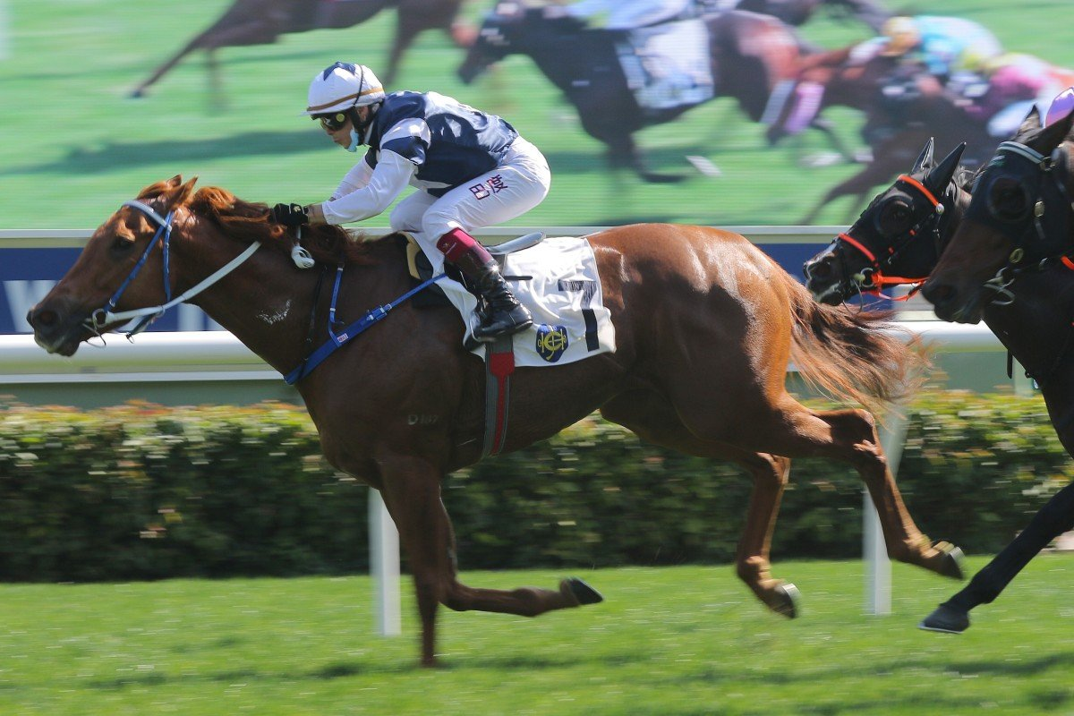 The Rock delivers at Sha Tin on Saturday. Photos: Kenneth Chan
