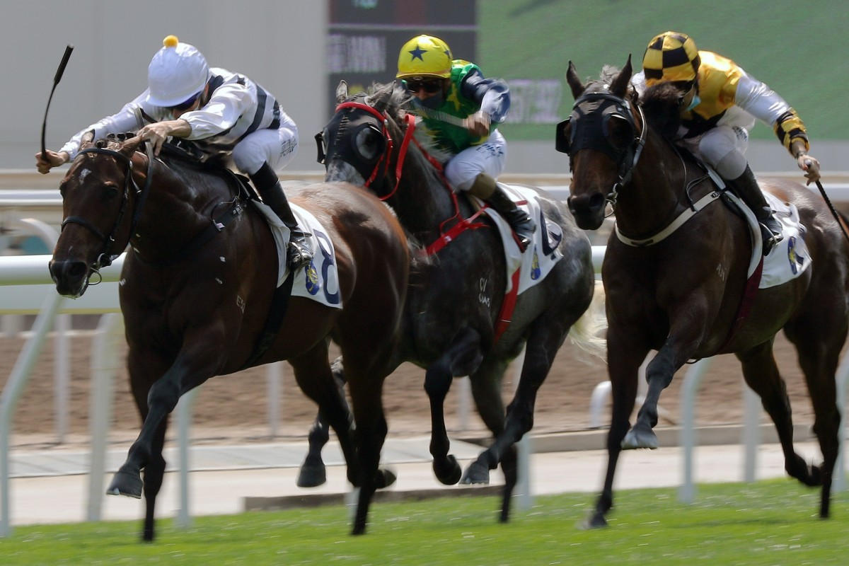 Joao Moreira urges Panfield home at Sha Tin on Sunday. Photo: Kenneth Chan