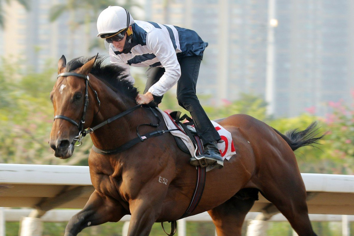 Chad Schofield trials Panfield at Sha Tin on Friday morning. Photos: Kenneth Chan