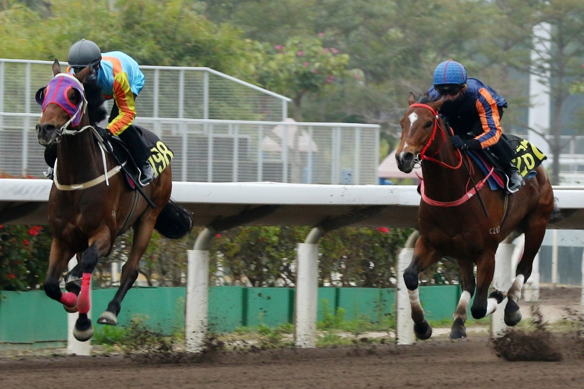 Zac Purton guides Ka Ying Star home in a barrier trial last month. Photos: Kenneth Chan