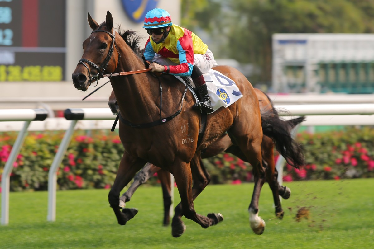 Wellington coasts to victory at Sha Tin on Saturday. Photos: Kenneth Chan