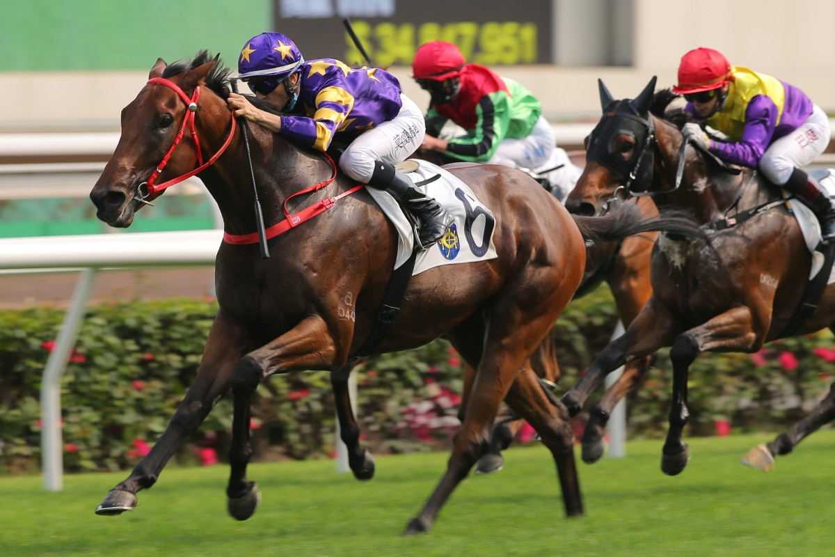 Joao Moreira guides Gallant Express to victory at Sha Tin in March. Photos: Kenneth Chan