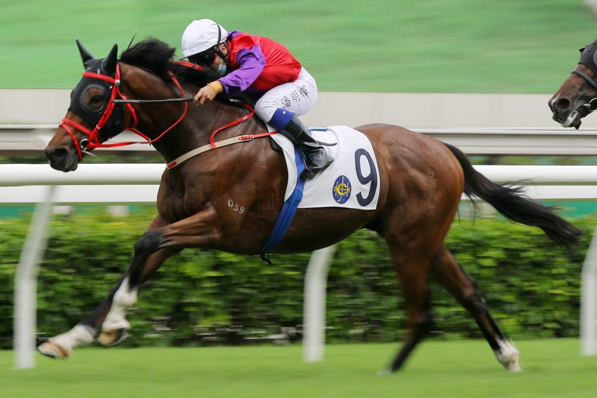 Matthew Poon drives Enzemble to victory at Sha Tin on Sunday. Photo: Kenneth Chan