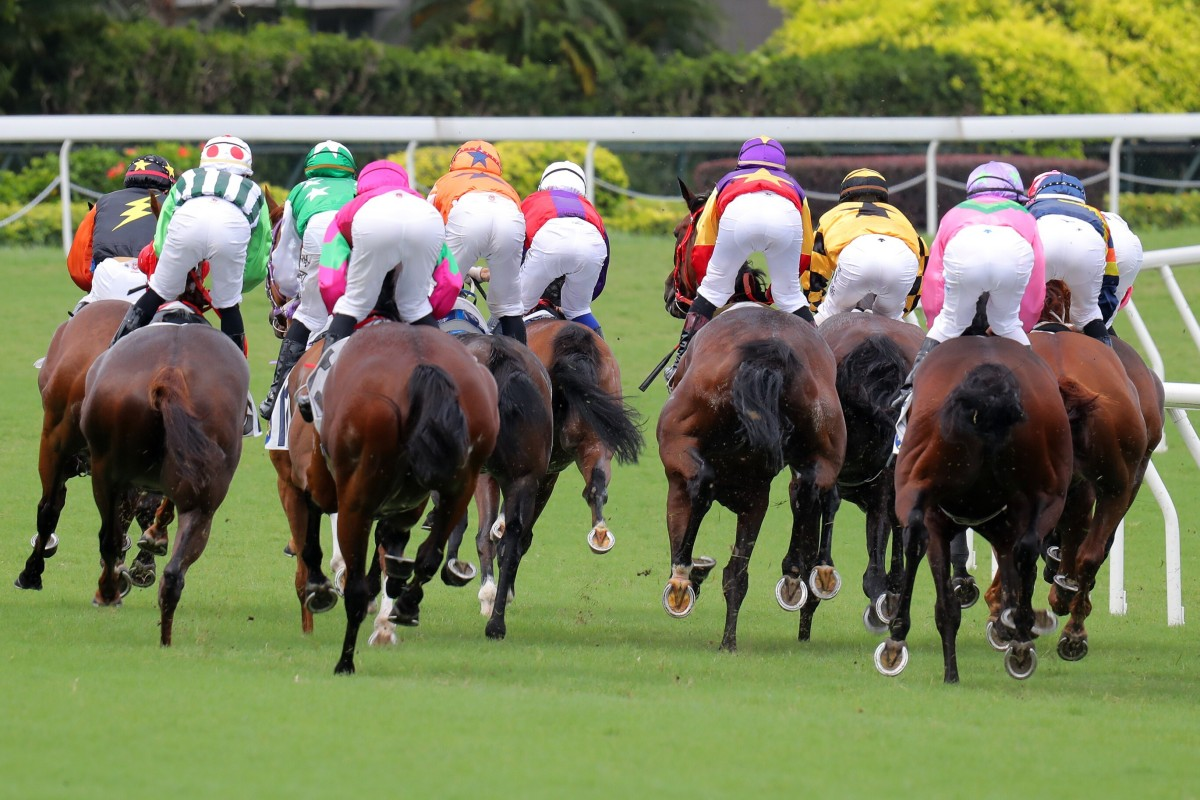 The field rushes to the first turn at Sha Tin on Sunday. Photos: Kenneth Chan