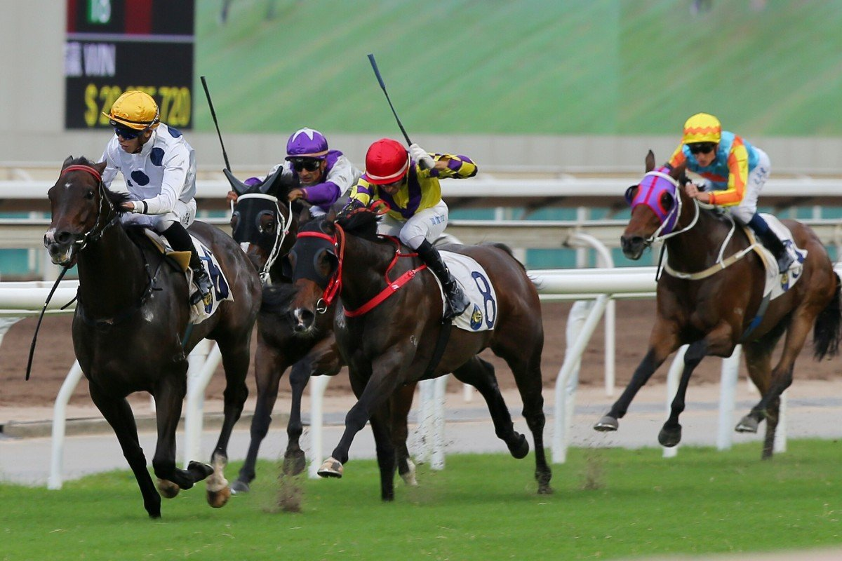 Golden Sixty wins the 2020 Celebration Cup. Photos: Kenneth Chan