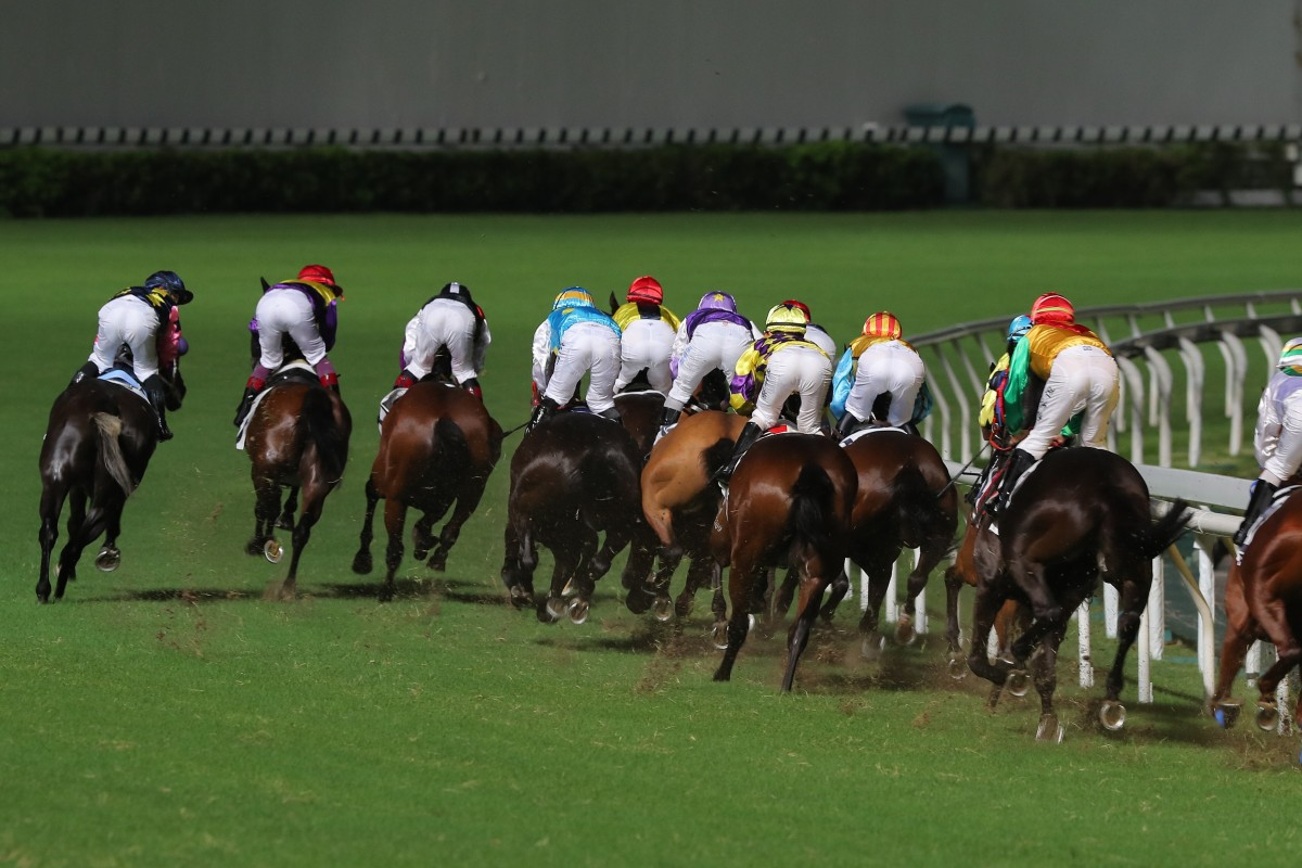Horses race at Happy Valley. Photo: Kenneth Chan