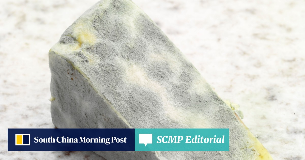 From cheese to bread: how to break the mould in Hong Kong's