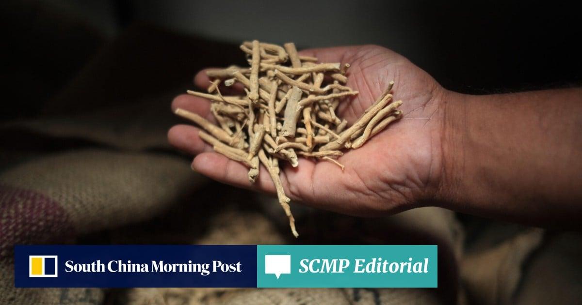 Why garlic, ginger, turmeric, moringa, Indian ginseng are so
