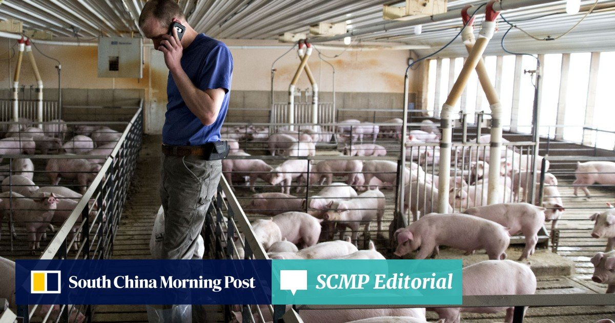 From bad to worse': tariff-hit US farmers urge Donald Trump