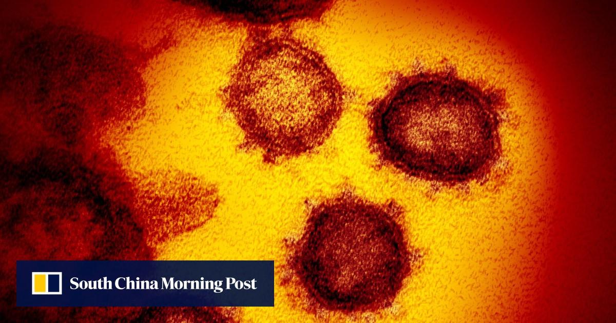 China needs system to track coronavirus variants, says top virologist