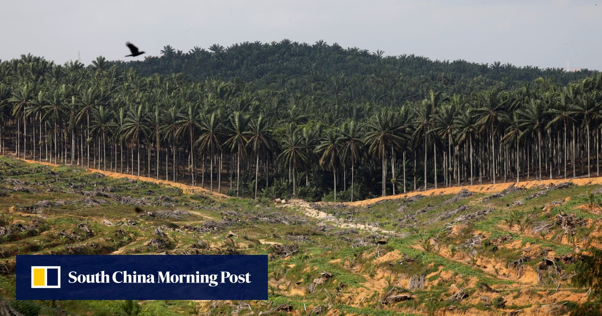 Malaysian leader Mahathir Mohamad threatens to boycott EU fighter jets over palm oil