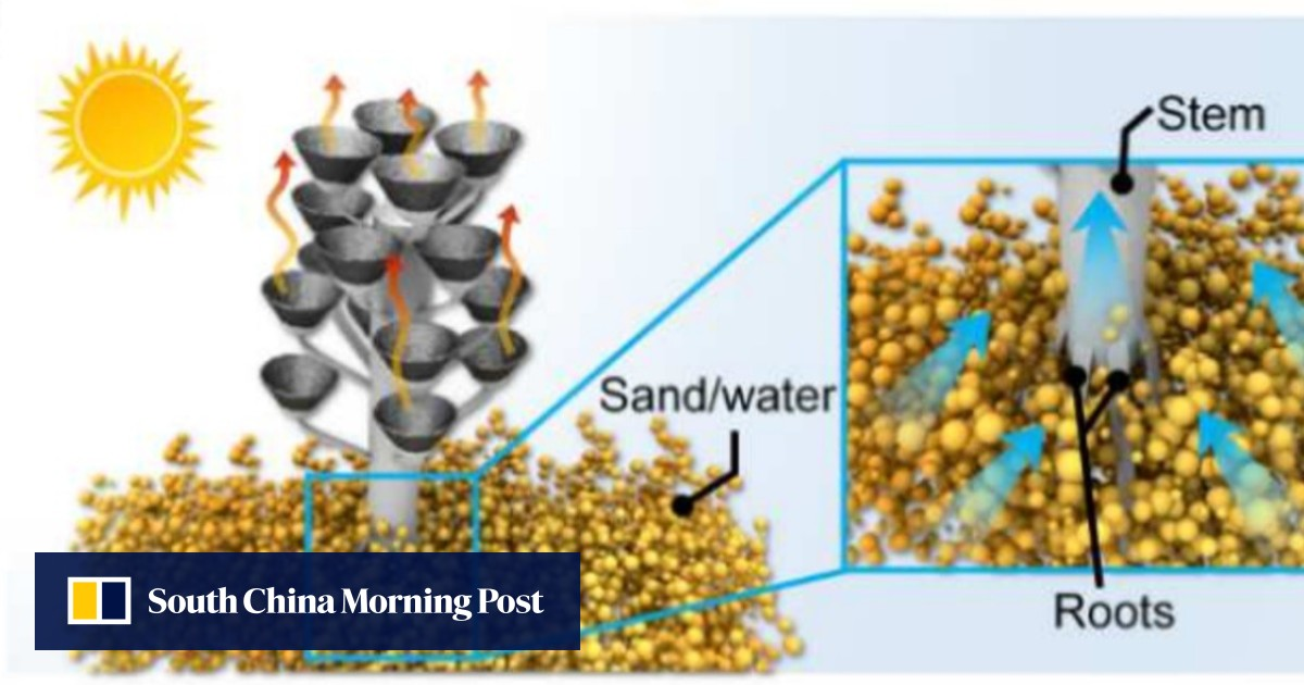 The solar-powered 'tree' that turns the sea into drinking water - South China Morning Post