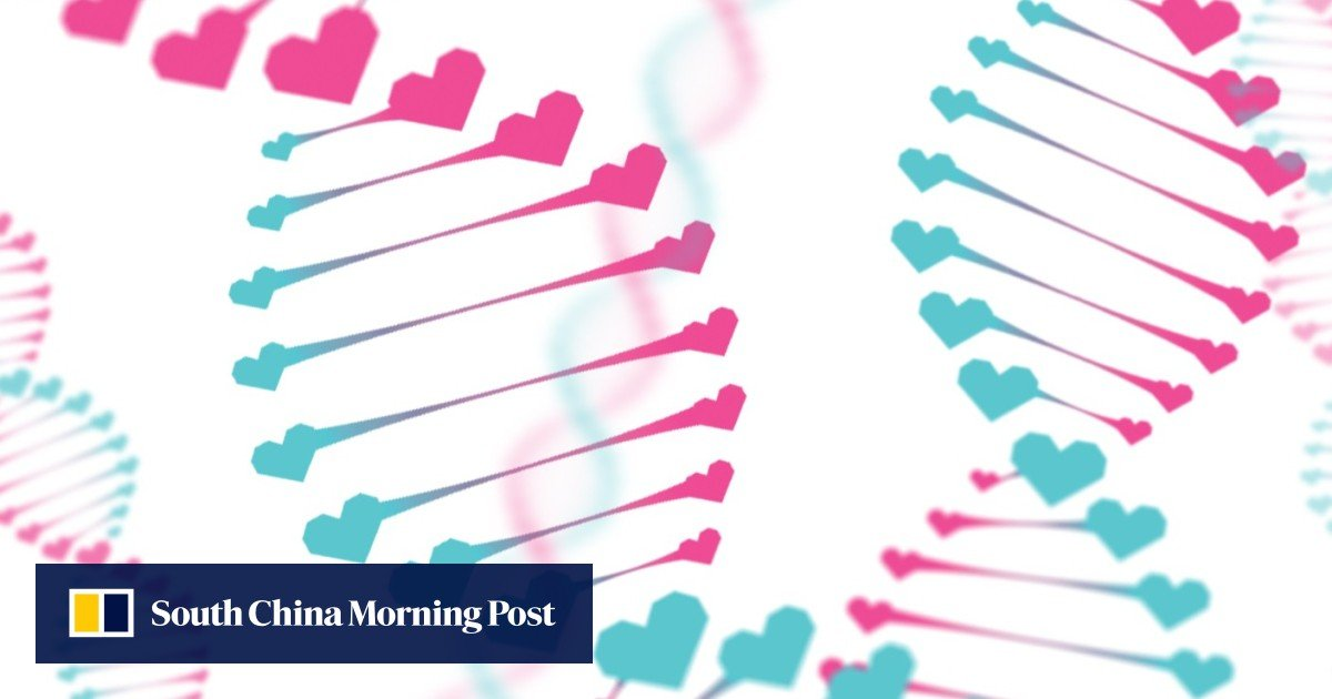 matchmaking DNA Gina velocità datazione
