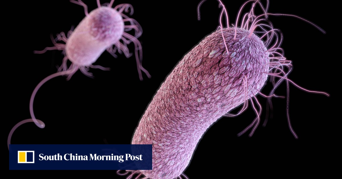 Hong Kong and Beijing scientists use gene editing to find cure for superbug
