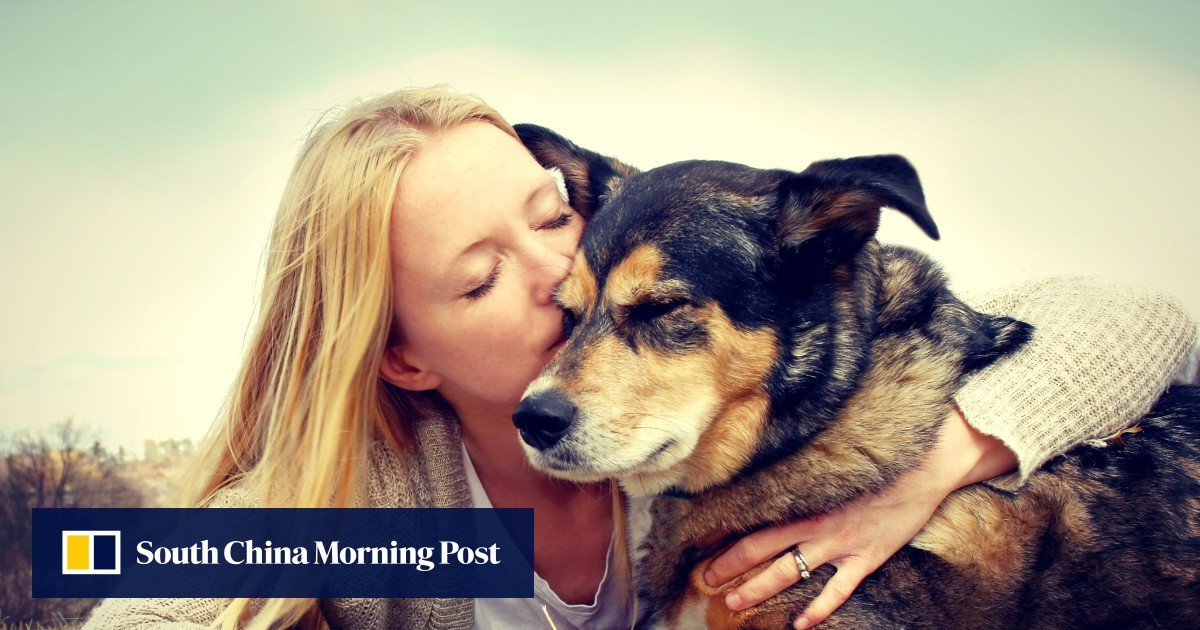 Why is a dog our best friend? Love, says animal psychologist