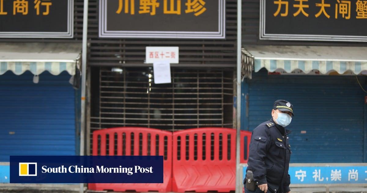Coronavirus did not originate in Wuhan seafood market, scientists say