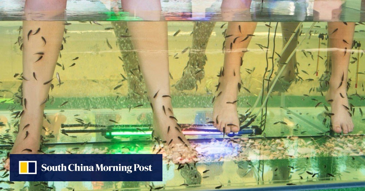 Are Your Feet Turning White And Soft With Little Holes In The Skin When You Run Or Sweat You Might Have Pitted Keratolysis South China Morning Post