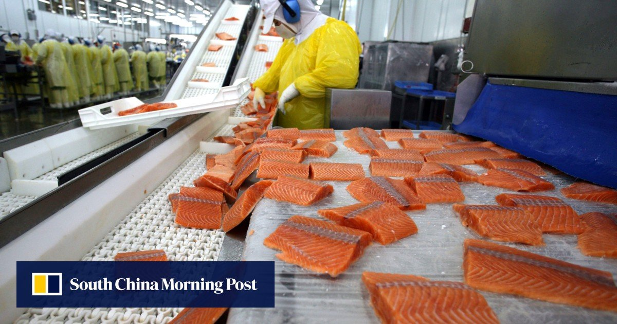 Coronavirus food scare puts China off Chilean salmon