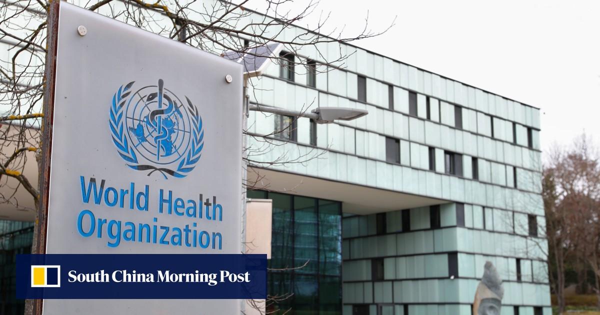 Chinese data can provide key to origins of coronavirus, WHO team says