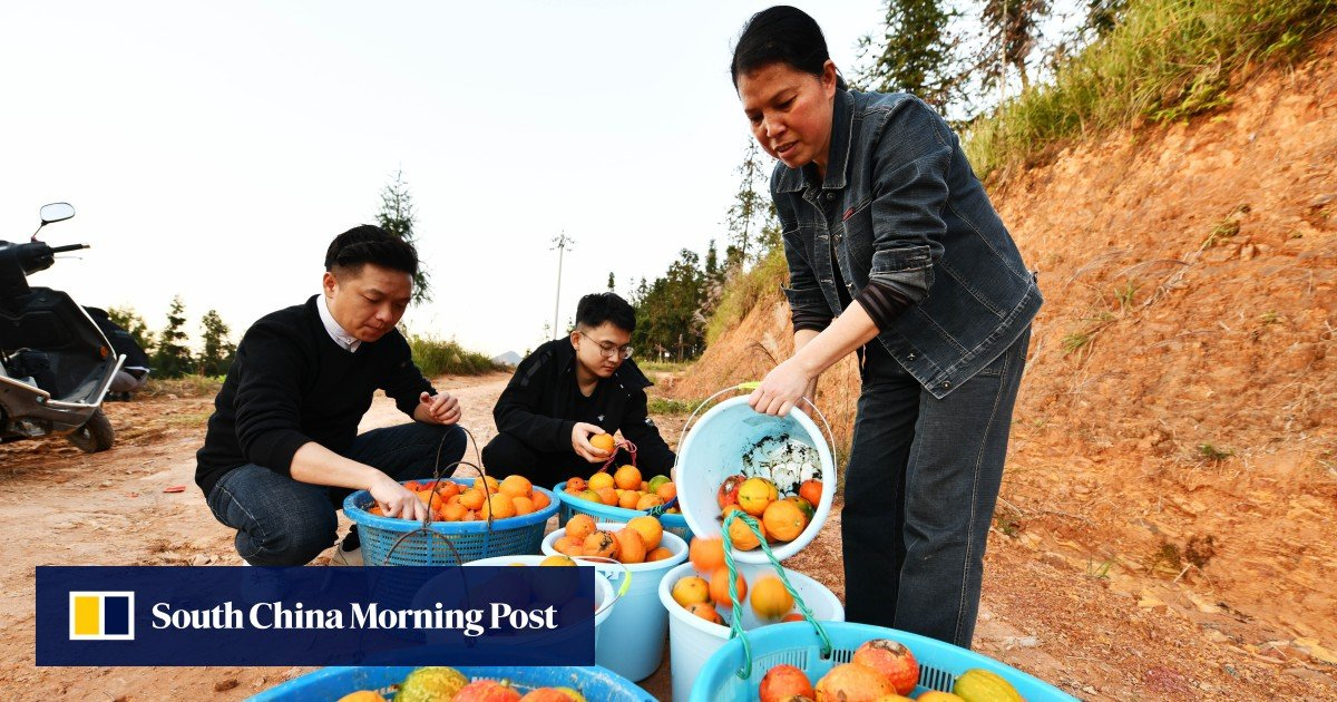 China looks to countryside for new tech talent